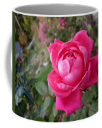Pink Double Rose Coffee Mug