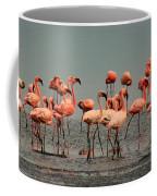 Pink Famingo Coffee Mug