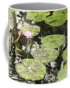 One Pink Water Lily With Lily Pads Coffee Mug