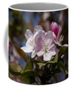 Pink Flowering Crabapple - Malus Coffee Mug