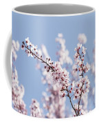 Pink For Girls   Blue For Boys Coffee Mug