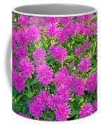 Pink Garden Flowers Coffee Mug