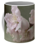Pink Is The Color Of Happiness Coffee Mug