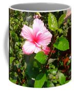 Pink Java Flower  Coffee Mug