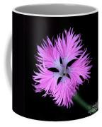 Pink Lace Coffee Mug
