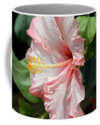 Pink Lady 2013 Coffee Mug