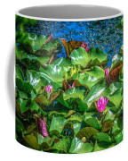 Pink Lilly Flowers And Pads Coffee Mug