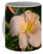 Pink Lily At Sunset 1 Coffee Mug