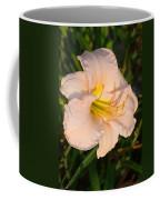 Pink Lily At Sunset 3 Coffee Mug