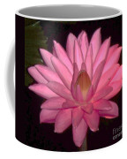 Pink Lily Flower Coffee Mug
