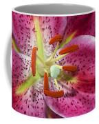 Pink Lily Up Close Coffee Mug