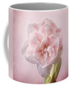 Pink Nymph Amaryllis Coffee Mug