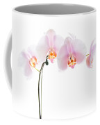 Pink Orchid Flowers Coffee Mug