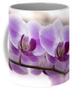Pink Orchid  Coffee Mug