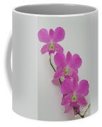 Pink Orchids 1 Coffee Mug