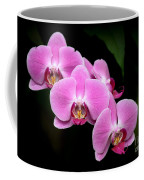 Pink Orchids In A Row Coffee Mug