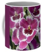 Pink Pansy Orchid Coffee Mug