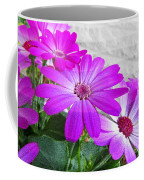 Pink Perciallis Ragwort Flower Art Prints Coffee Mug