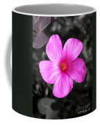 Pink Phlox Coffee Mug