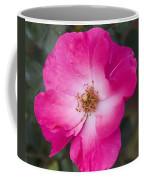 Pink Pink Coffee Mug