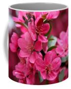 Pink Plum Blossoms Coffee Mug
