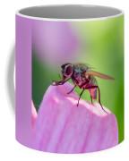 Pink Reflection On Flies Body. Coffee Mug