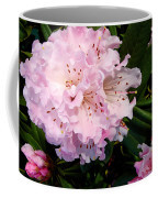 Pink Rhodies Coffee Mug