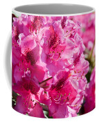 Rhododendron Called Azalea Bright Pink Flowers  Coffee Mug