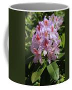 Pink Rhododendron In Sunshine Coffee Mug