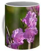 Pink Rhododendrons Coffee Mug