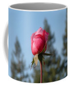 Pink Rose And Trees Coffee Mug