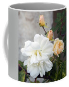 Pink Rose Buds At Carmel By The Sea Mission Coffee Mug