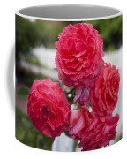 Pink Roses White Picket Fence Coffee Mug