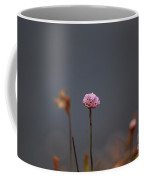 Pink Series IIi Coffee Mug