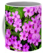 Pink Sorrel Coffee Mug