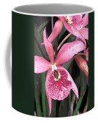 Pink Spotted Cattleya Orchids Coffee Mug