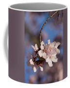 Pink Spring - Sunlit Blossoms And Blue Sky - Vertical Coffee Mug