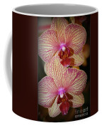 Pink Striped Orchids Coffee Mug