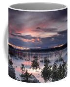 Pink Sunset At The Lake Coffee Mug