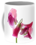 Pink Sweet Pea 2 Coffee Mug