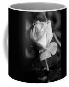 Pink Tea Rose 01 - Infrared Coffee Mug