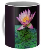 Pink Tipped Beauty Coffee Mug