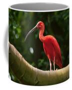 Pink Tropical Bird Coffee Mug