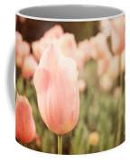Pink Tulip Field Coffee Mug