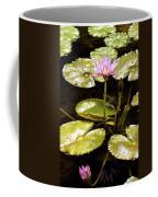 A Waterlily Reflection Coffee Mug
