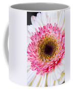 Pink White Daisy Coffee Mug
