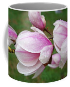 Pink White Wet Raindrops Magnolia Flowers Coffee Mug