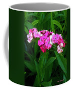 Pink Willie Coffee Mug