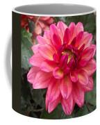 Pink Zinnia Flower Coffee Mug
