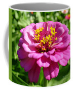 Pink Zinnia Coffee Mug